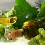 Calendar viticol