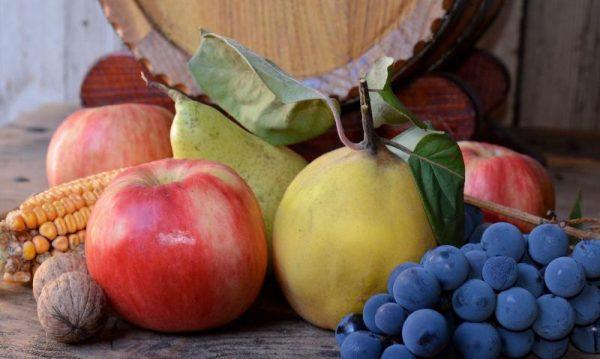 fructe_de_toamna-locale