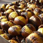 castane-comestibile-dulci-delicii-culinare