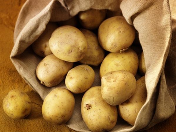 soiuri-de-cartofi-productive